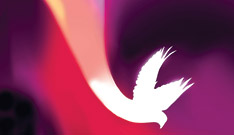 free Pentecost resources