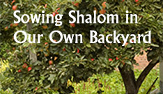 Sowing Shalom in Our Own Backyard - Church Planting